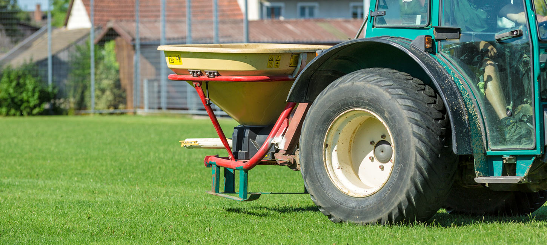Ohne Nährstoffe, keine dichte Grasnarbe